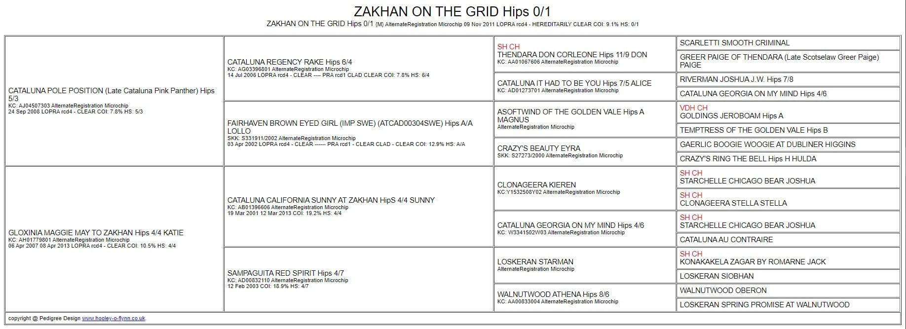 JENSEN - ZAKHAN ON THE GRID