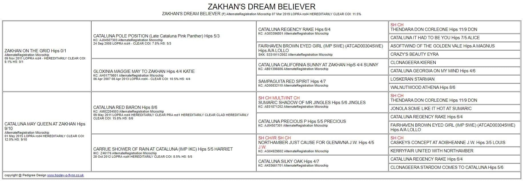 ZAKHANS DREAM BELIEVER